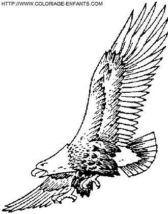 El logotipo de Inversiones Dalport es un águila extraída de un ...
