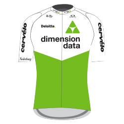 Team Dimension Data