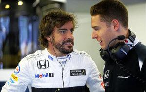 Vandoorne (BEL) McLaren Honda. Circuito Gilles Villeneuve.  G.P. de...