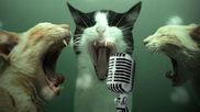 Olvídate de la vergüenza y vete a un karaoke. ¡Canta todo lo que...