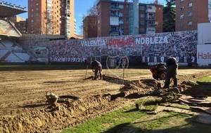 Las obras para renovar el césped de Vallecas durante el parón...