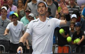 Murray celebra la victoria