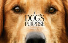 Cartel promocional de 'A dog's purpose'