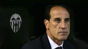 Voro, en el banquillo de Mestalla.