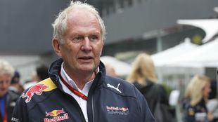 Helmut Marko, consejero de Red Bull