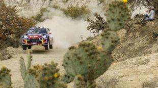 Sébastien Loeb, el piloto más laureado de la carrera, en 2012, el...
