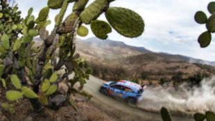 Dani Sordo, durante el Rally de México