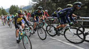 El pelot�n, durante la tercera etapa de la Volta a Catalunya.
