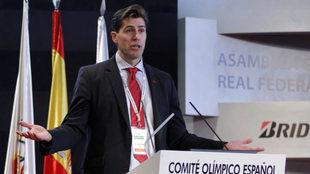 Raúl Cahapdo, presidente de la Federación Española de Atletismo,...