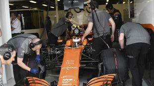 Stoffel Vandoorne, piloto de McLaren Honda