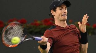 Andy Murray, en un partido.