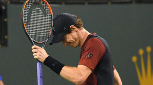 Andy Murray lamentándose en Indian Wells.