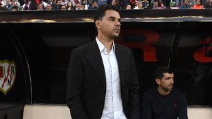 Michel, entrenador del Rayo Vallecano durante un encuentro.