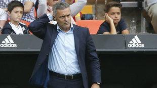 Fran Escribá, pensativo, durante el partido en Mestalla.