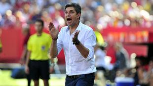 Pellegrino, en el último Sevilla-Alavés.