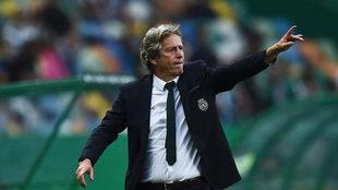Jorge Jesús, en un partido del Sporting.