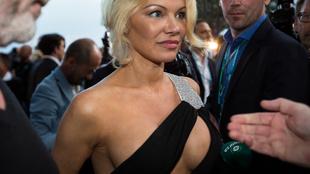 Pamela Anderson revolucion� al Gran Premio de M�naco a las puertas...