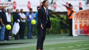 Almeyda da indicaciones en un partido de las Chivas.