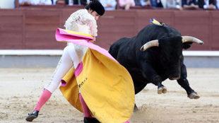 Gomez del Pilar durante la lidia del tercer toro, al que le ha cortado...