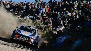 Neuville, durante el pasado Rally de Argentina.