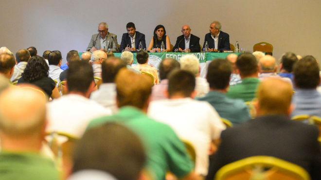 Representantes del Consejo, durante su encuentro con las Peñas