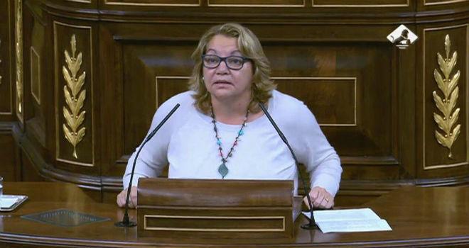 Meri Pita en el Congreso de los Diputados.