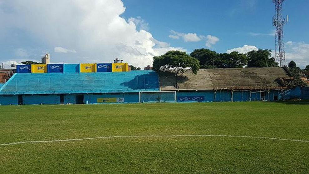Imagen del lapacho sobre uno de los fondos del estadio de Resistencia...