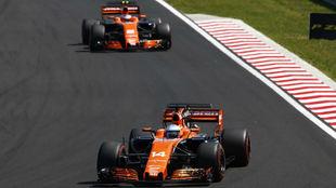 Fernando Alonso y Stoffel Vandoorne