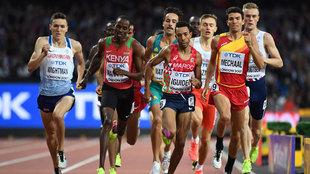 Semifinal de 1.500 metros en el Mundial de Atletismo de Londres.
