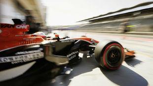 Vandoorne, al volante del McLaren Honda