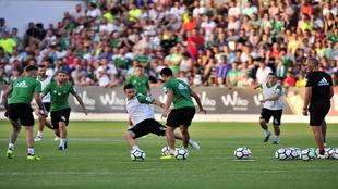 Entrenamiento del Betis en la Ciudad Deportiva