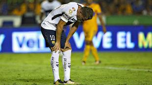 Abraham González en lamento ante los Tigres