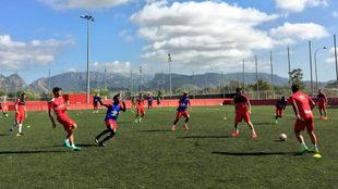 Los jugadores del Mallorca, durante el entrenamiento.
