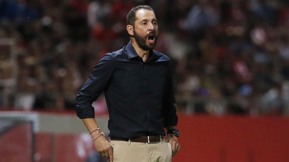 Pablo Machín en un partido del Girona