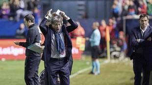 Enrique Martín hace gestos en el Osasuna-Betis de hace un año en El...