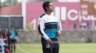 Luis Camacho, técnico de las Chivas.