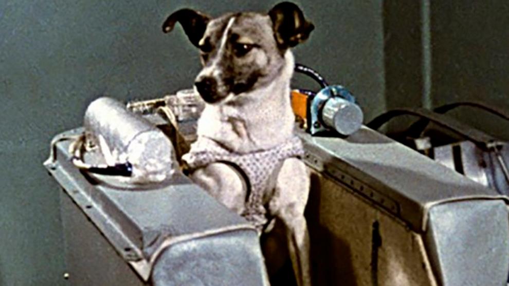 El viaje de Laika, corto y trágico, fue la apertura de la raza humana para trascender las fronteras del espacio exterior