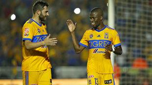 Valencia le dio la victoria a los Tigres ante Necaxa