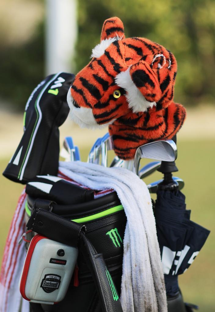 La bolsa de Tiger.
