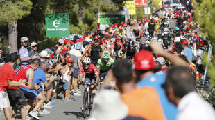 Imagen de la pasada Vuelta a España