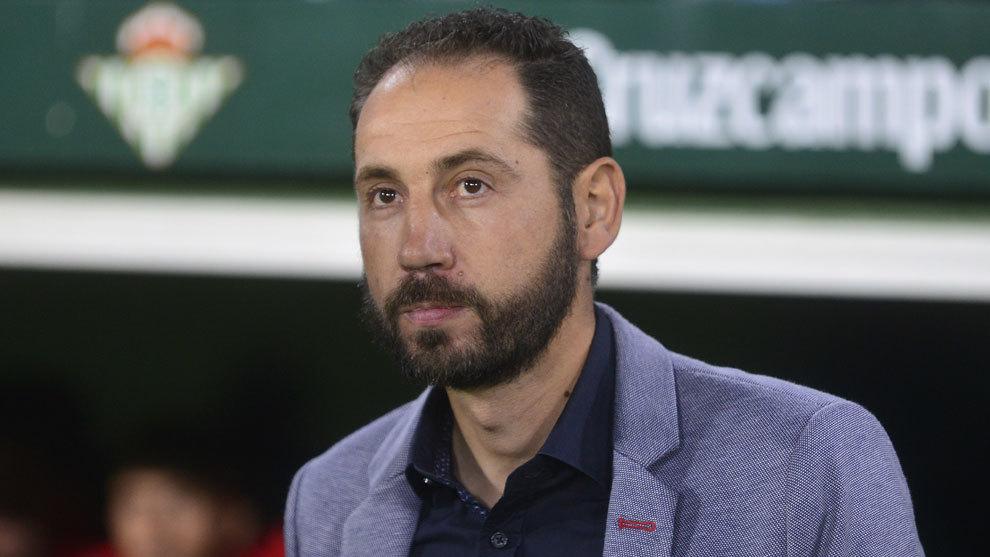 Pablo Machín, en el banquillo del estadio Benito Villamarín
