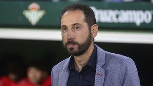 Pablo Machín, entrenador del Girona.