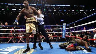 El campeón mundial de los pesados WBC, uno de los campeones...