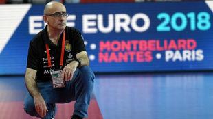 Jordi Ribera, en un momento del partido ante Dinamarca