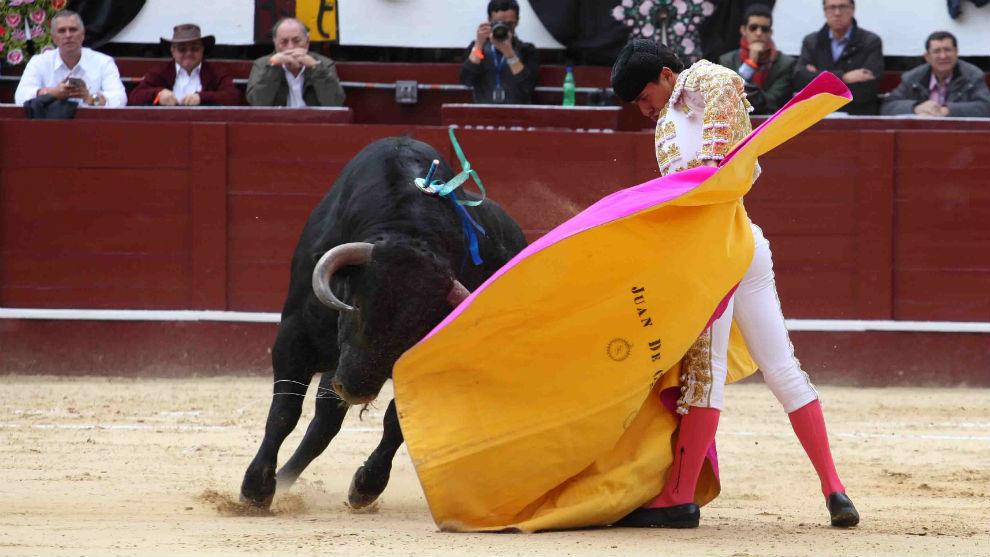Imagen de la corrida