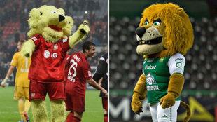 Los leones se unieron