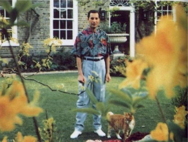 Freddie Mercury, 45 ans.  Le chanteur de la reine a nié toutes les rumeurs de sa maladie jusqu'au moment de sa mort d'une pneumonie causée par le sida.