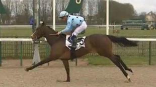 'Lozoya', en su victoria en Chantilly