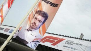 Banderas de acceso al circuito con la imagen de Fernando Alonso.