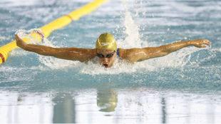 Mireia Belmonte nadando la mariposa en los 400 m estilos.